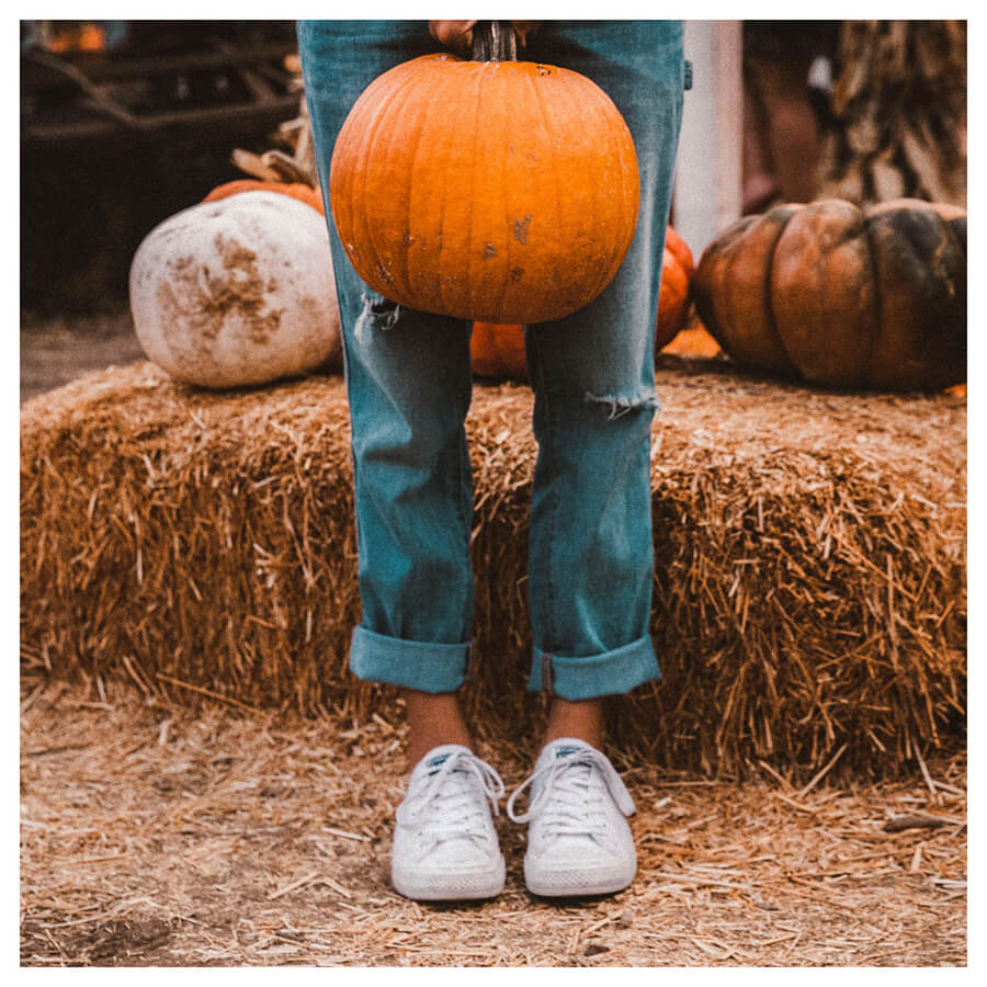 Sweet Pumkpin Lightroom Preset Filters pumpkin and halloween for influencers After