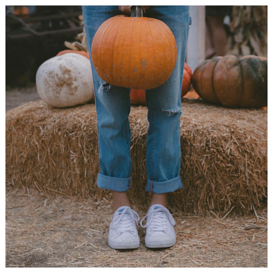 Sweet Pumkpin Lightroom Preset Filters pumpkin and halloween for influencers Before