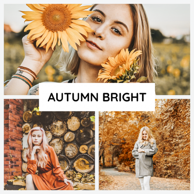 product photo autumn bright presets